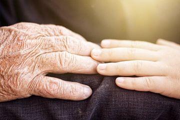 Junge Hand berührt ältere Hand von Besa Art