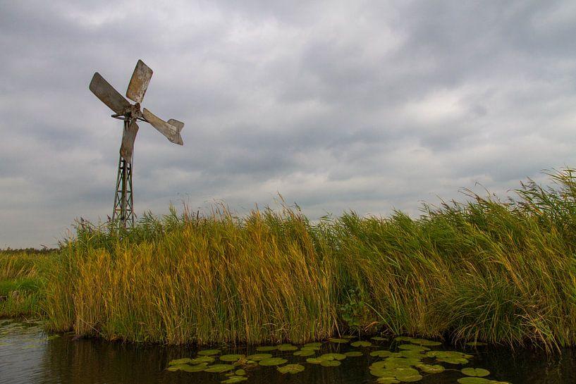 Windmolen in de weerribben van Niels Eric Fotografie
