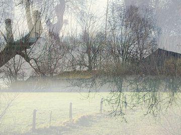 Nebliges Morgenlicht von Anita Snik-Broeken