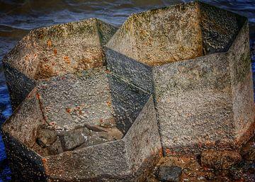 Stahlbau im Wasser von Gerard Lakerveld