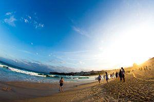 Fun at Bondi Beach van