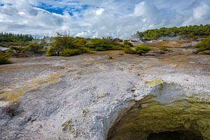 Mysterieus landschap bij Rotoroa, Nieuw Zeeland van