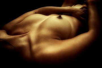 Relax (nude / naakt) van Kees de Knegt