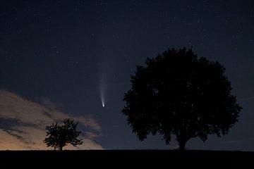 Komeetnacht van Uwe Ulrich Grün