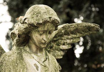 Engel van Jaco Verheul
