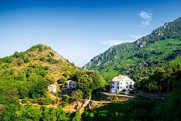 Huis in Corsicaanse bergen van Youri Mahieu
