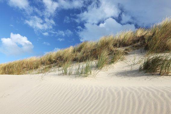 Duinlandschap aan de noordzee op Texel van Arjan Groot