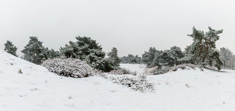 Panorama - Winter Wonderland van William Mevissen