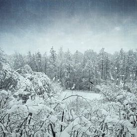 Winter landscape van Dirk Wüstenhagen