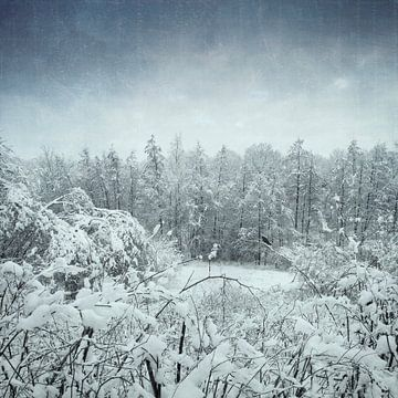 Winterlandschaft von Dirk Wüstenhagen