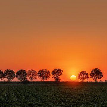 Coucher de soleil sur Tholen, Pays-Bas sur Adelheid Smitt