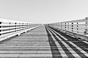 Brug aan de Californische kust van Lars-Olof Nilsson
