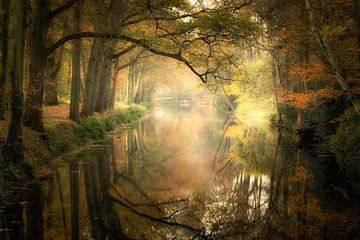 Herbstliche Reflexionen; von Karel Ton