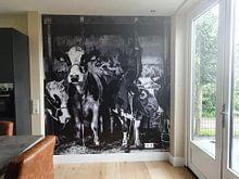Kundenfoto: Koeien in oude stal von Inge Jansen, auf nahtloser fototapete