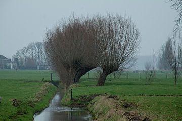 Alkeetse polder 04 van Hans Blommestijn