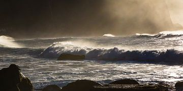 Wellen 2 (Madeira) von Bart Stappers