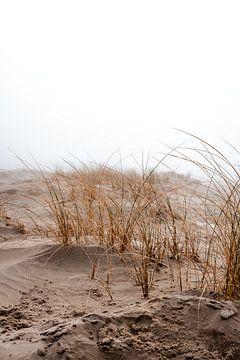 Natuurpark de Slufter gehuld in de mist III | Een reis over Waddeneiland Texel von Roos Maryne - Natuur fotografie