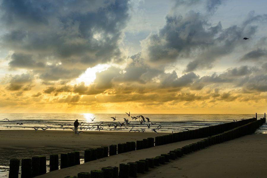 Strand Domburg in avondzon van 7Horses Photography
