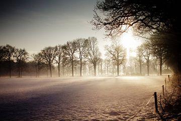 The warmth of winter van Simon Claassen