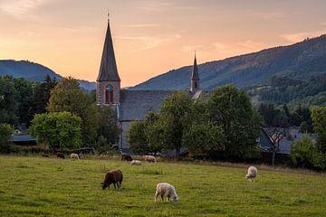 Parochiekerk St. Katharina Assinghausen met schapen van Deimel Fotografie