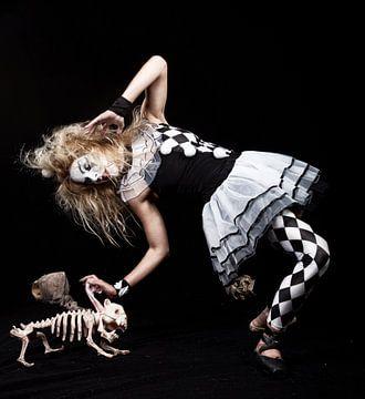 Killer harlequin van Jeroen Gordijn