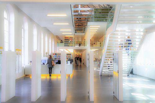 Witte kamer - Utrecht universiteit van Omri Raviv