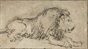 Liegender Löwe, rechts, Rembrandt van Rijn