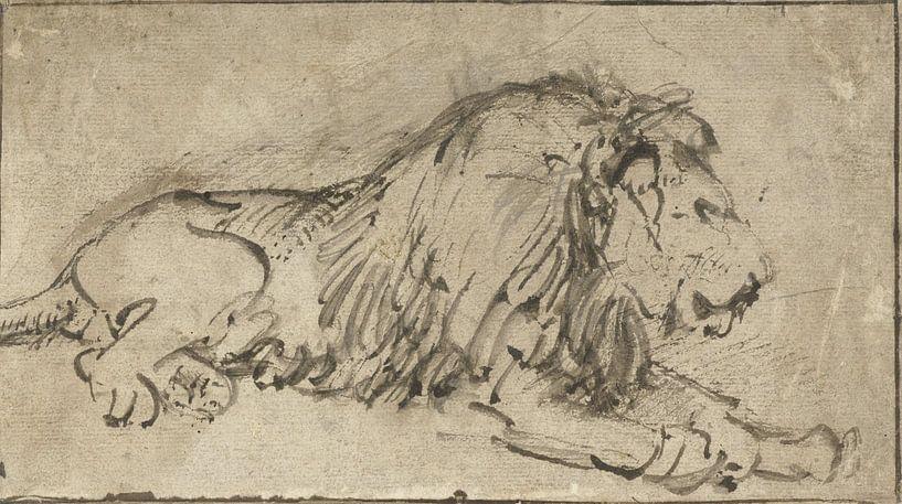 Liegender Löwe, rechts, Rembrandt van Rijn von Ed z'n Schets
