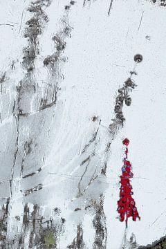 Das Distelmädchen von Sandra van de Griendt - Fibre Art