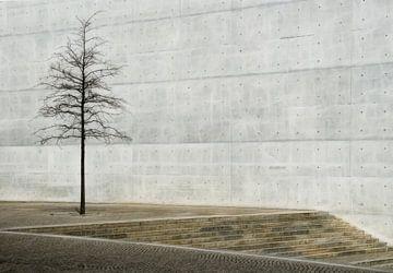 Eenzame boom van Marcel van Balken