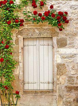 Double-Blind (Fenster mit Rosen) von Caroline Lichthart