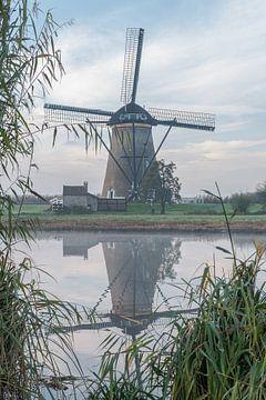 Mühle Kinderdijk im Herbst von Mark den Boer