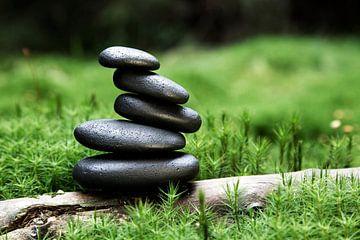 aufgeschichtete Steine aus Basalt im Wald umgeben von Moos von Jürgen Wiesler