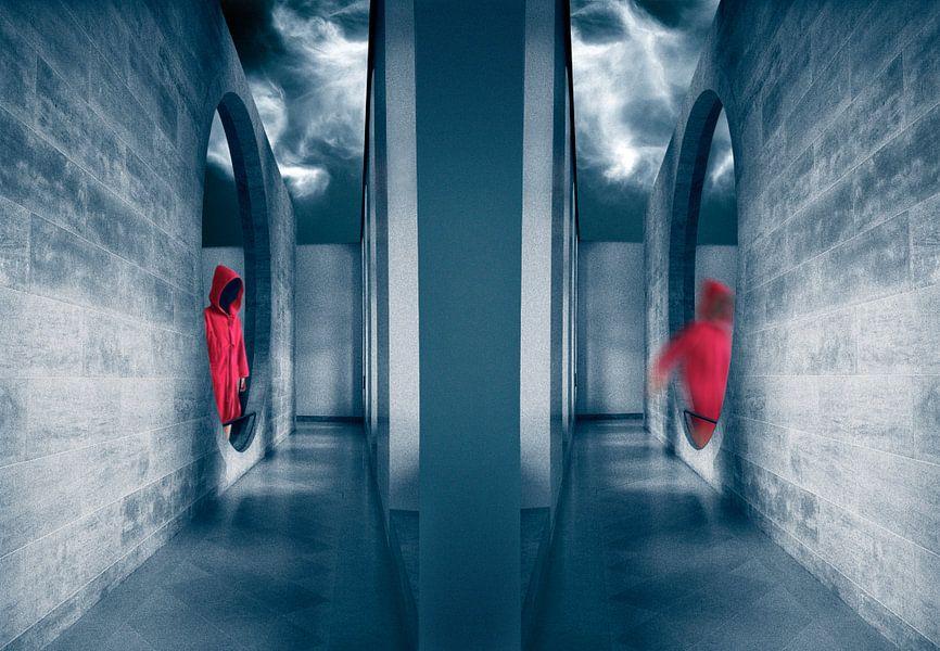 Beweging in rood en blauw van Marcel van Balken