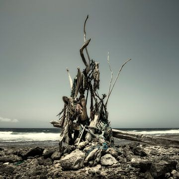 Kunstwerk van wrakhout sur Keesnan Dogger Fotografie