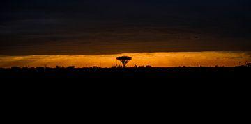 Epischer Sonnenuntergang von Awid Safaei