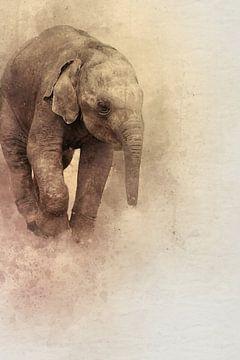 Junger Elefant in Aquarell von Kvinne Fotografie