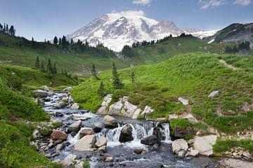 Mount Rainier von Antwan Janssen