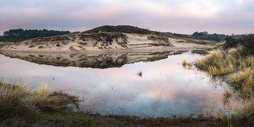 Reflectie in duingebied van Mijendel Wassenaar