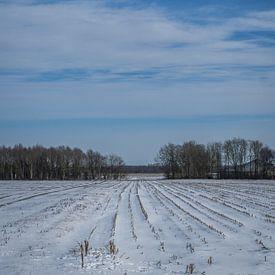 paysage enneigé sur Andre Klooster