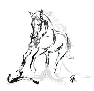 Paard Andalusian Angel