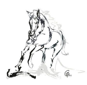 Paard Andalusian Angel van Go van Kampen