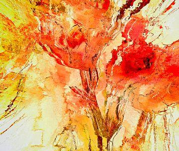 Blütenpracht von Matthias Rehme