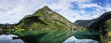 Bezinning in Noorwegen van Stefan Havadi-Nagy