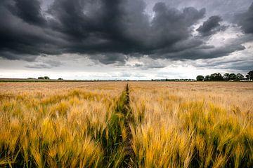 Driegende storm wolken boven het landschap van Fotografiecor .nl