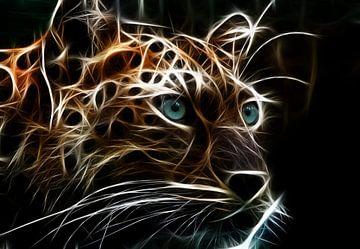 Der Leopard von Bert Hooijer