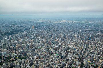 Uitzicht over Tokyo, Japan van Marcel Alsemgeest