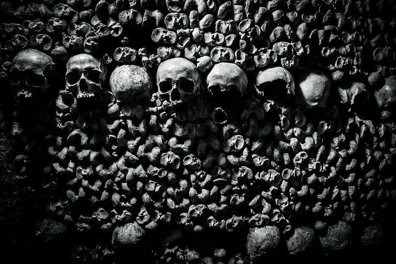 Doodshoofd Catacomben van Parijs van Melvin Erné