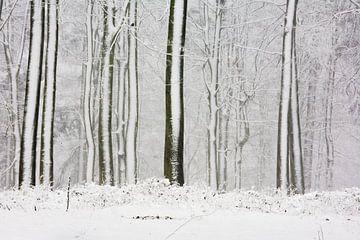 Bomen in de sneeuw als streepjescode von Jim van Iterson