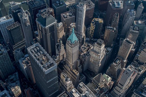 Downtown Manhattan, NYC van Thomas Bartelds